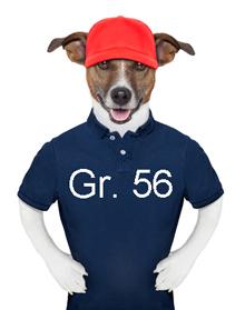 SOMMER T-Shirt - Sweatshirt - Bluse - Gr.56