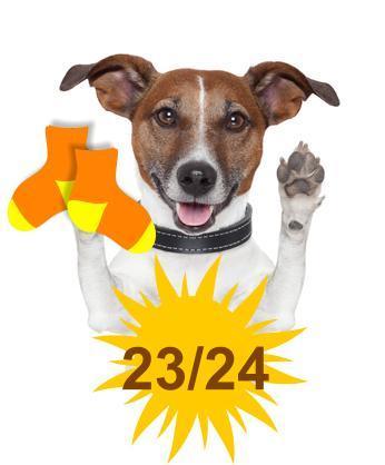 Sommer FliesenFlitzer - Socken - Hausschuhe Gr.23/24